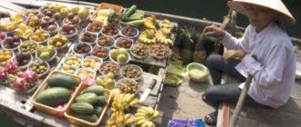 Таможенные правила Вьетнама следует изучить еще до поездки