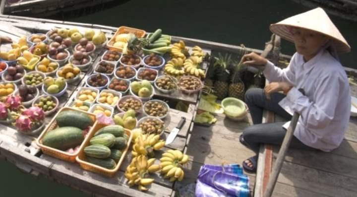 Что можно и что нельзя туристу вывозить из Вьетнама